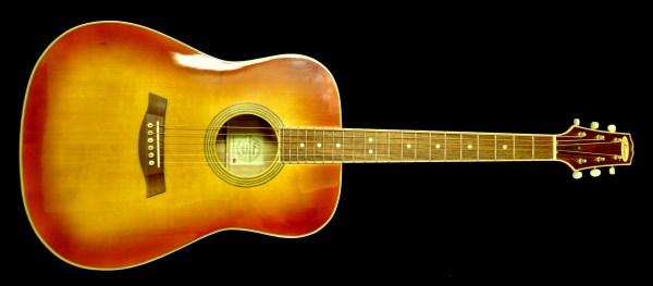 NWS Acoustics, Birch